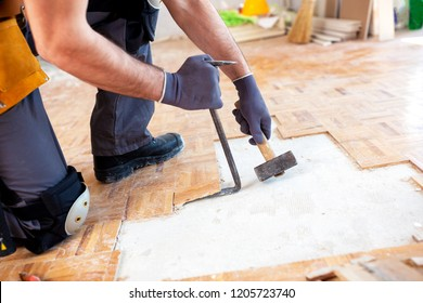 Attractive young man doing manual work with hammer and a crowbar