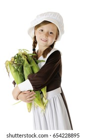 An attractive young Pilgrim girl with an armload of fresh corn in the husks.  On a white background.