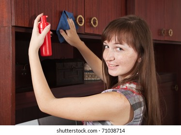 attractive young woman cleaning  furniture at home