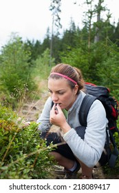 Attractive young woman picking and eating sweet blueberries on forest path on a beautiful summer day