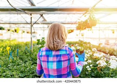 Attractive young woman working in greenhouse and enjoying in beautiful flowers. Photographed from the back.