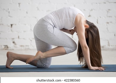 Attractive young woman working out indoors. Beautiful model doing exercises on blue mat in room with white walls. Bird-dog or Knee to Forehead curl (Eka Pada Marjariasana). Full length