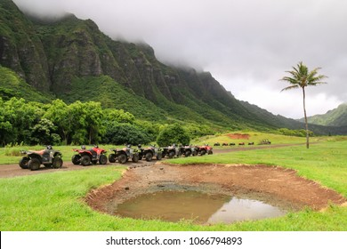 ATVs in a row on unpaved road with mountain and medow background
