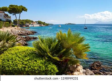 Aucanada beach near Alcudia, Majorca, Spain