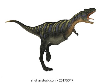 Aucasaurus dinosaur isolated on white background