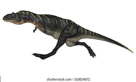 Aucasaurus dinosaur running isolated in white background - 3D render