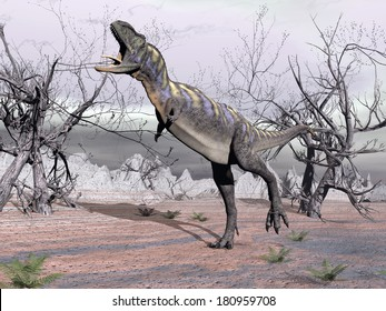 Aucasaurus dinosaur walking and roaring in the desert by cloudy day