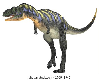 Aucasaurus over White - Aucasaurus was a carnivorous dinosaur that lived in the Cretaceous Period of Argentina, South America.