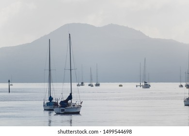 Auckland / New Zealand - June 12 2019: View of yachts with Rangitoto volcano in background