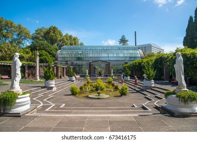 Auckland, New Zealand - March 05 2017: The Winter Garden at the Auckland Domain is a treasure of great historic interest. It was designed in the early 1900s in the style of the famous English.