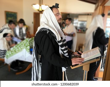 AUCKLAND - OCT 11 2018:Jewish men praying from the Torah together. Reading the Torah is one of the bases for Jewish life.