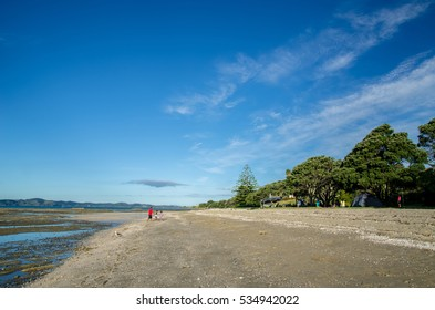 Auckland,New Zealand - January 30,2016 : Omana Regional Park in Auckland, New Zealand.