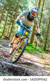 Audacious ride on mountain bike on rooted forest trail