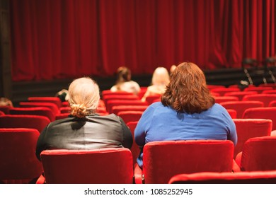 audience coming to theater play
