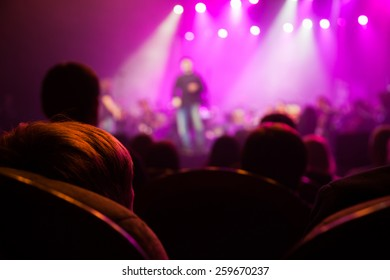 The audience at a concert on the background of the scene.