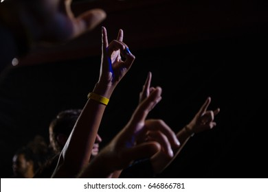 Audience dancing at a rock concert in club