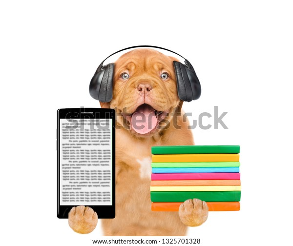 Audio book concept. Puppy with  headphones holding books and eBook. isolated on white background