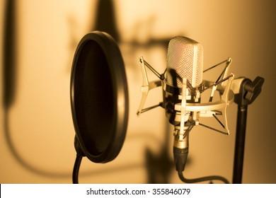 Voice Actor Images, Stock Photos & Vectors | Shutterstock