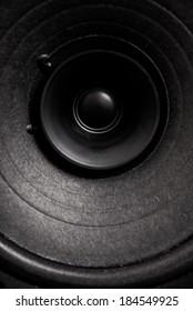 Audiophile hi-fi music audio speaker membrane