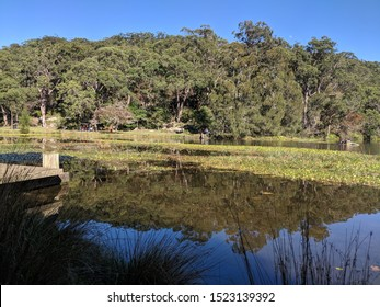 audly boatshed allambie flat picnic area car park royal National park NSW Sydney Australia