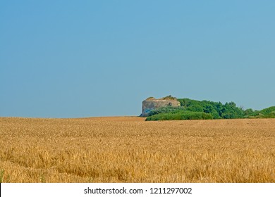 AUDRESSELLES, FRANCE, JULY 26, 2018,  Old world war two bunker ina wheat field along the French opal coast. Audresselles, 26 July
