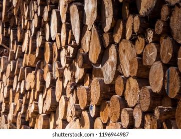 Aufgestapeltes Feuerholz im Wald