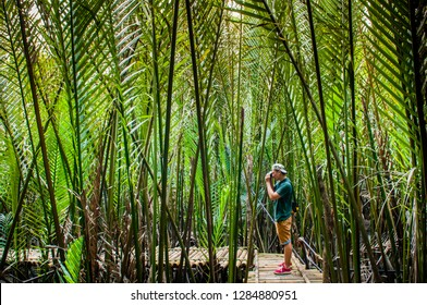 AUG 2, 2017 Trat, Thailand - A guy with camera explored lush green mangrove forest full of Nipa palm in Thailand.