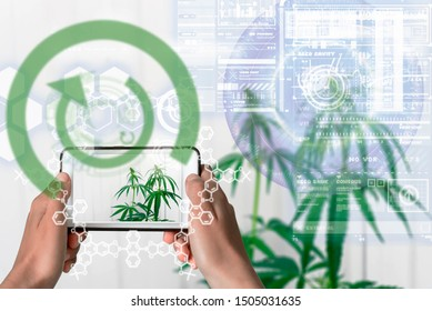 Augmented Reality device using smart technology, augmentation reality through the application of artificial intelligence and computer AI tech assistance for cannabis THC properties and DNA