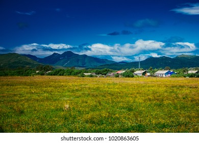 August 2017. View from road to the North of Sakhalin island. Flora of Sakhalin region.