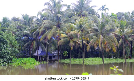 August 2018, Ernakulam Kerala, India: The buildings submerged under flooded water due to very heavy rainfall. Kerala was badly affected by the flood.