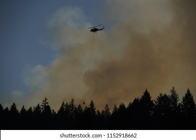 August 9, 2018 West Vancouver BC Canada : BC fire fighters using helicopter against the forest fire near horseshoes bay around 8 am