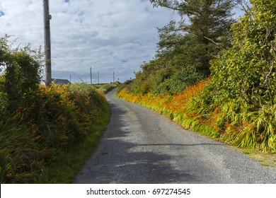 August Road