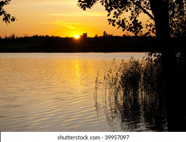 In August sun is setting quite late still, grass and trees are shown as silhouette