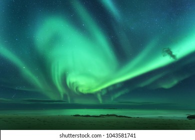 Aurora. Aurora borealis above the sea. Lofoten islands, Norway. Green northern lights. Starry sky with polar lights. Night winter landscape with aurora, sea with sky reflection in water. Nature