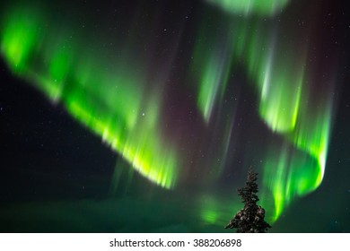 Aurora borealis in Lapland, Finland.