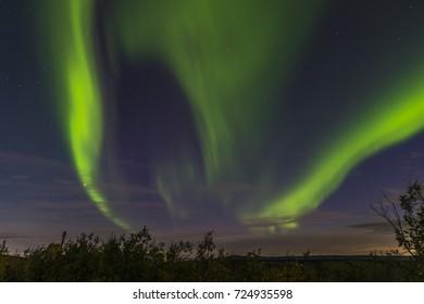Aurora Borealis - the Northern Lights, Fairbanks,, Alaska