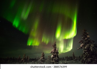Aurora borealis (northern lights) in Lapland, Finland.