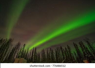 Aurora Borealis Northern Lights in North Pole Fairbanks Alaska USA
