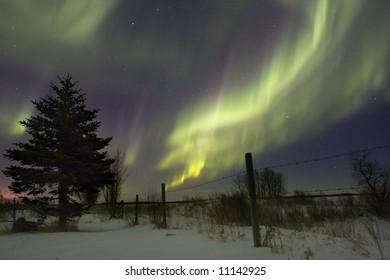 Aurora Borealis over fields, Gilbert Plains, Manitoba, Canada