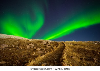 Aurora borealis over winding path