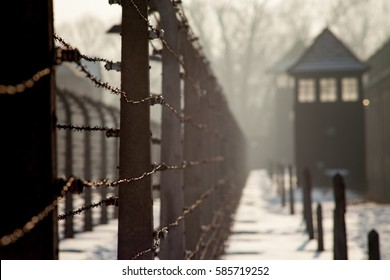 AUSCHWITZ, POLAND - FEBRUARY 10, 2019 ; Museum Auschwitz - Holocaust Memorial Museum. Barbed wire around a concentration camp. Shed guard in the background.