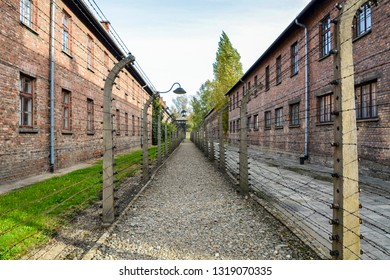 Auschwitz-Birkenau, Poland 2018: Separation barbed wire in prison camps. Auschwitz concentration camp surrounded by barbed wire fence at. Tenements and watchtowers inside prison camp. Death barrack.