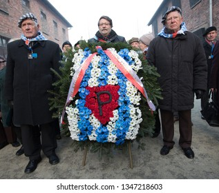 Auschwitz-Birkenau, Poland - 27 January 2017: 72 th Anniversary of the Liberation of Auschwitz. Survived prisoners of the german concentration camp Auschitz-Birkenau fold flowers by the wall of death