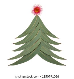 An Aussie Christmas tree made up of Australian gum tree leaves with a large red gum nut blossom