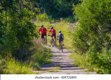AUSTIN, TEXAS â?? AUGUST 3 2013: mountain bikers rounding a curve amongst cedar trees and grasses