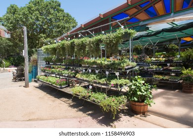 AUSTIN, TEXAS - JULY 19 2018: rows and shelves of plants for sale