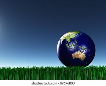 Australasia on grass