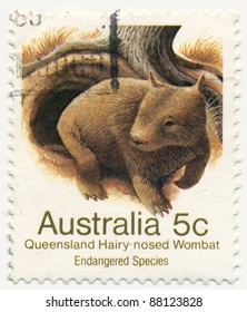 AUSTRALIA - CIRCA 1981: A stamp printed in  Australia shows Queensland Hairy-nosed Wombat, series, circa 1981