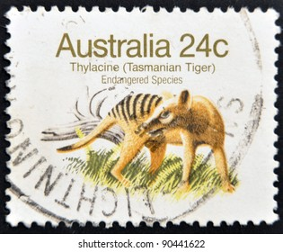 "AUSTRALIA - CIRCA 1981: A Stamp printed in AUSTRALIA shows the image of a Thylacine (Tasmanian Tiger) with the description ""Endangered Species"",  circa 1981"