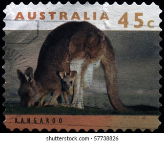 AUSTRALIA - CIRCA 1994: A stamp printed in Australia shows Kangroos, series, circa 1994